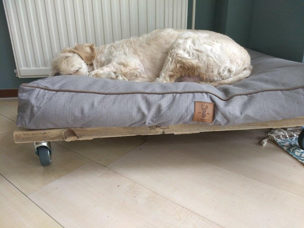 hondenbed van hout