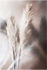 Herfst poster